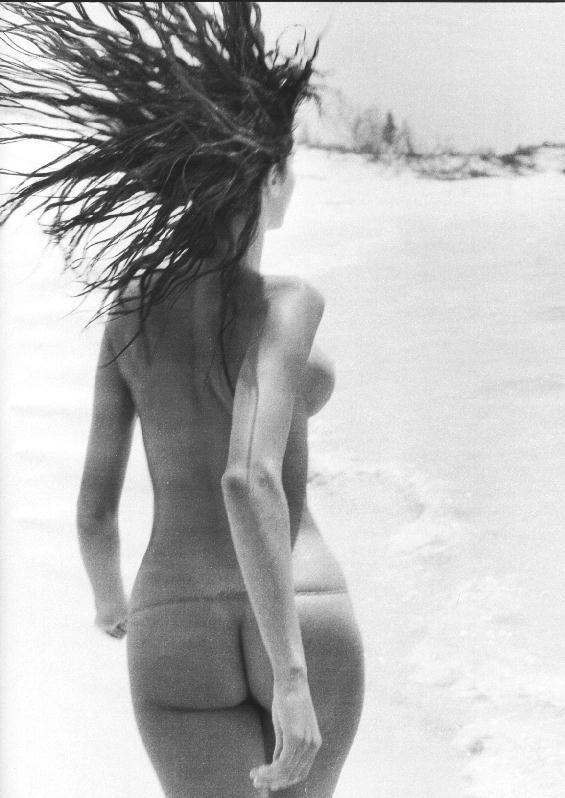 Stephanie Seymour Nude (3...
