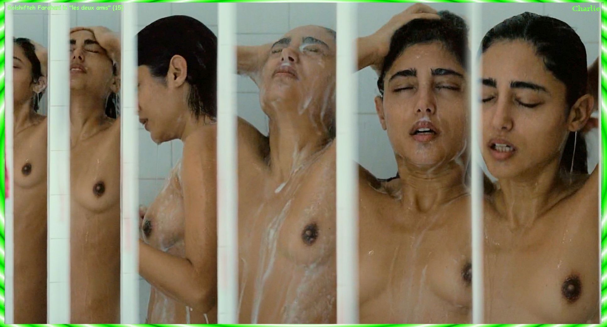 Nude Photos Of Golshifteh...