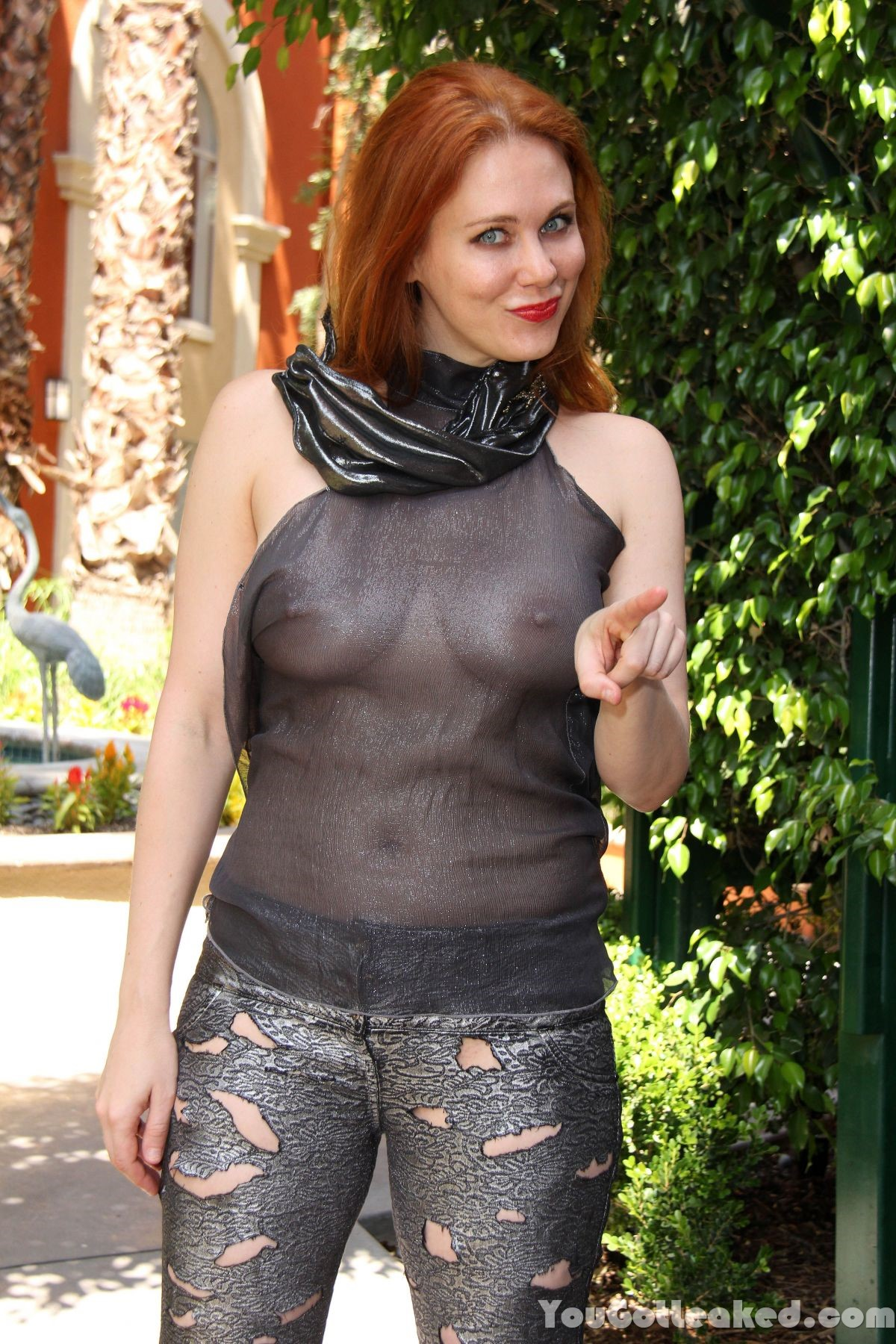 Maitland Ward See-through...